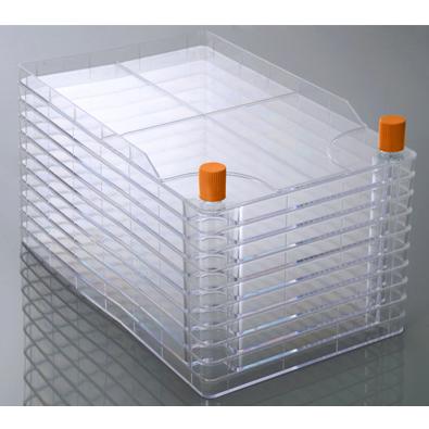 Клеточные фабрики узкогорлые