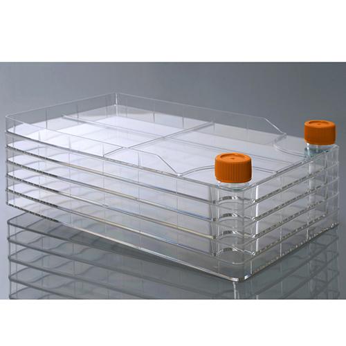 Клеточные фабрики широкогорлые