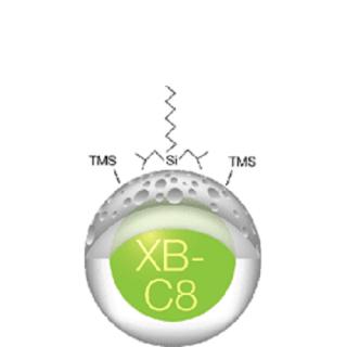 AERIS WIDEPORE XB-C8