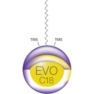 Kinetex EVO C18